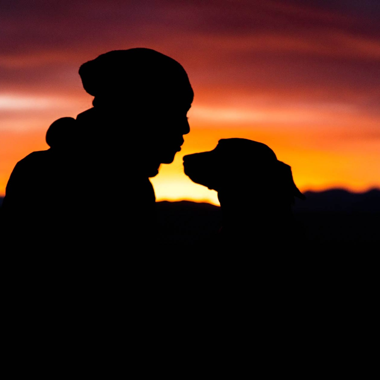 Grief after the Loss of a Beloved Pet: Three characteristics and Recommendations for it´s Resolution.